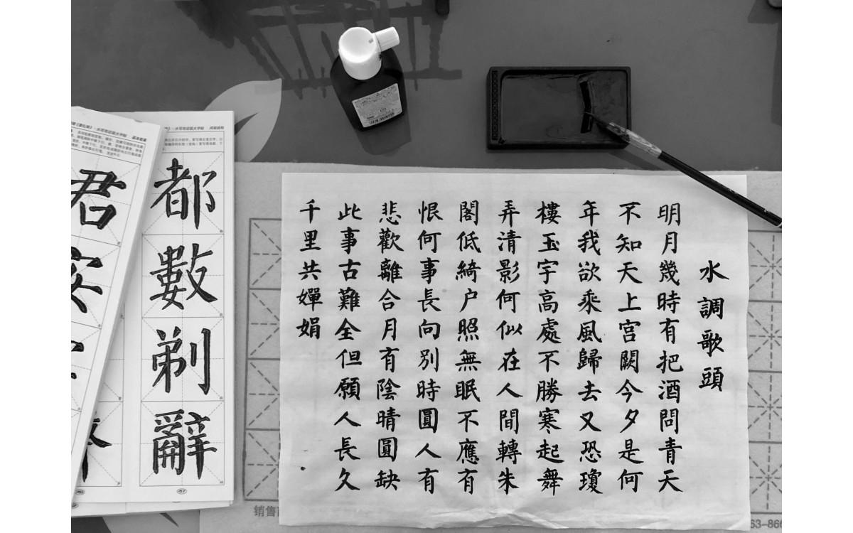 Çince Mütercim Tercümanlık, Çin Dili Edebiyatı, Sinoloji,