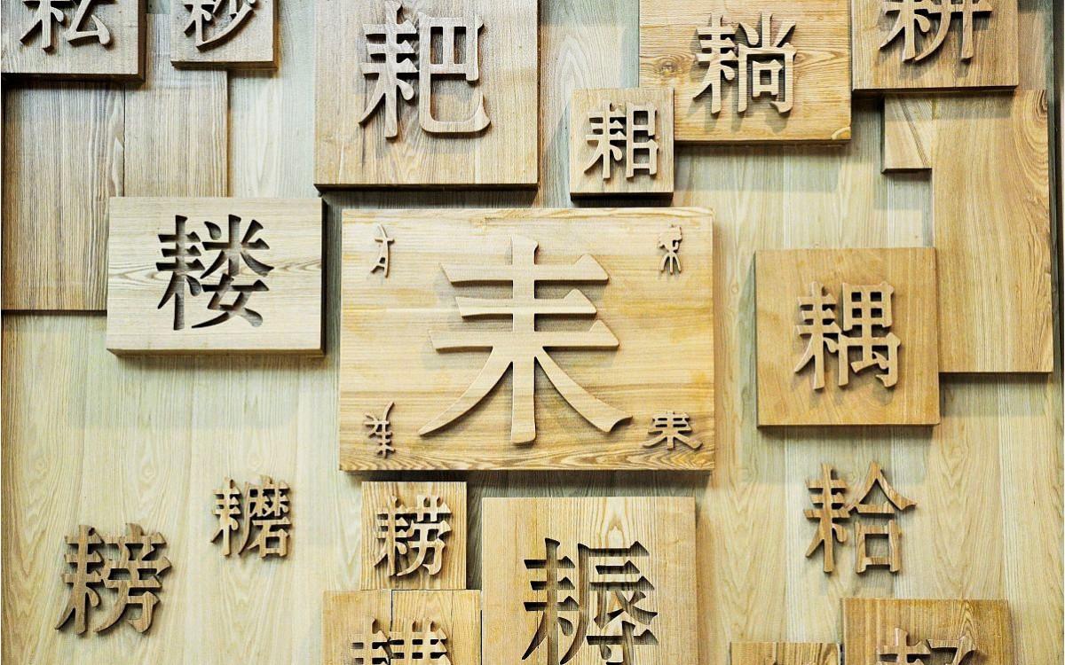 Çince Okumak