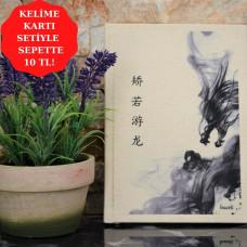 Çince Defter - 1802 矫若游龙